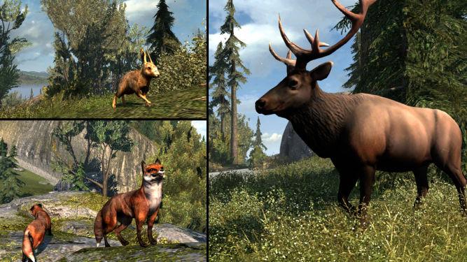 Zwierzęta w Assassin's Creed III