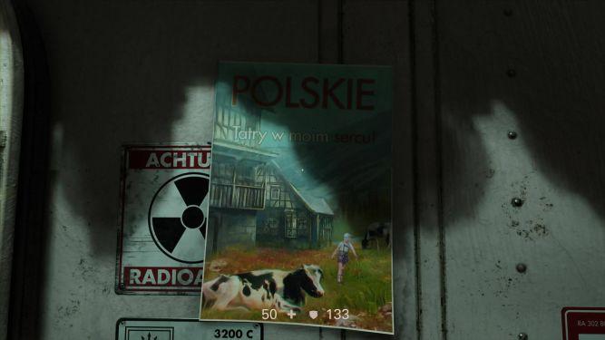 Polskich graczy mogą ucieszyć takie akcenty.